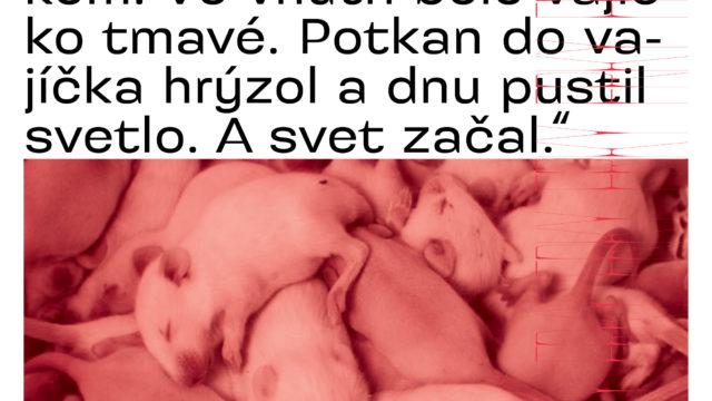 https://kapital-noviny.sk/wp-content/uploads/2020/05/2005_KAPITAL_05_IMUNITA_NA-WEB_COVERS_5-640x360.jpg